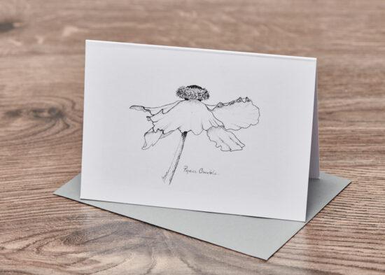 Ballet Poppy